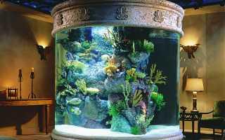 Крышки для аквариумов: как сделать своими руками (изготовление), необходимость её делать