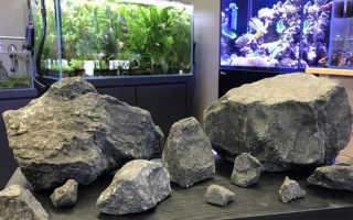 Камни для аквариума своими руками: какие можно использовать, обработка, проблемы
