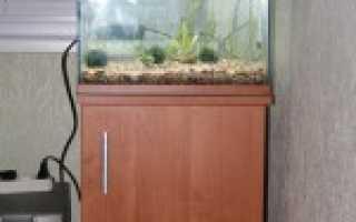Как сделать аквариум своими руками из стекла: пошаговая инструкция для самостоятельного изготовления