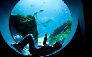 pH воды: что это, измерить (проверить, определить) в домашних условиях, как понизить в аквариуме высокий уровень пш, как повысить,