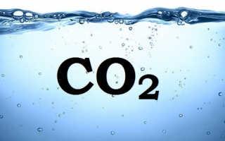 СО2 для аквариума своими руками (система, реактор, генератор): способы подачи, зачем нужен и для чего