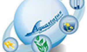 Аквариумный распылитель воздуха: какой лучше, назначение, виды, преимущества мелких пузырьков