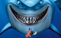 Гуппи совместимость с другими рыбами: таблица с кем держать (уживаются) – меченосцы, неоны, барбусы, петушок, моллинезии