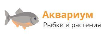 aqua-sales.ru